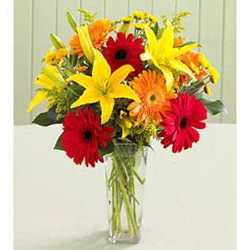 Flores En San José Bo Naciones Unidas Floreria Envios