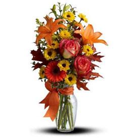 Flores En Costa Rica Floreria Envios De Flores A